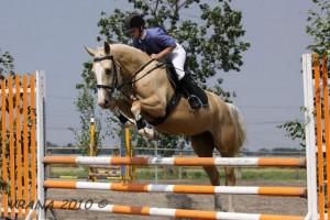 horse_mona_kinsk-_2big.jpg