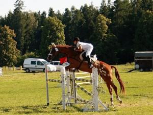 horse_enny-big.jpg