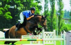 horse_alois-big.jpg