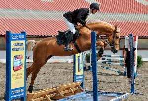 horse_glorion-_2big.jpg
