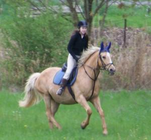 horse_aneta-_2big.jpg