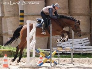 horse_britany-_3big.jpg